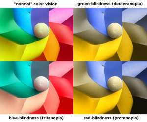 3 main types of colourblindness